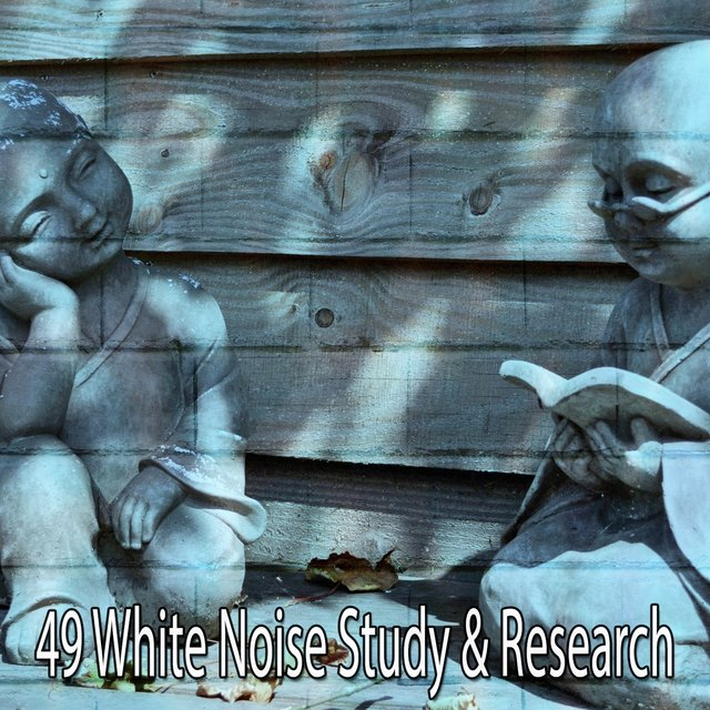 49 White Noise Study & Research