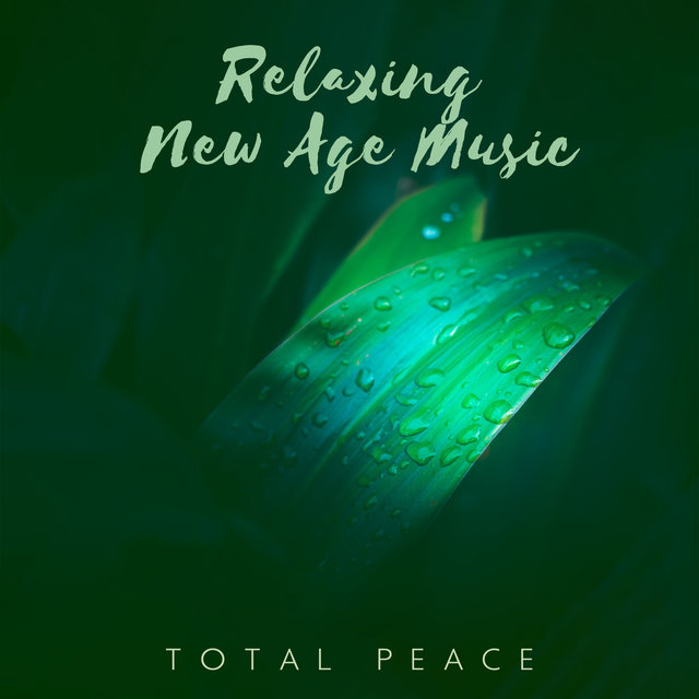 Relaxing New Age Music: Total Peace of Mind. Clear Nature Sounds for Stress Relief
