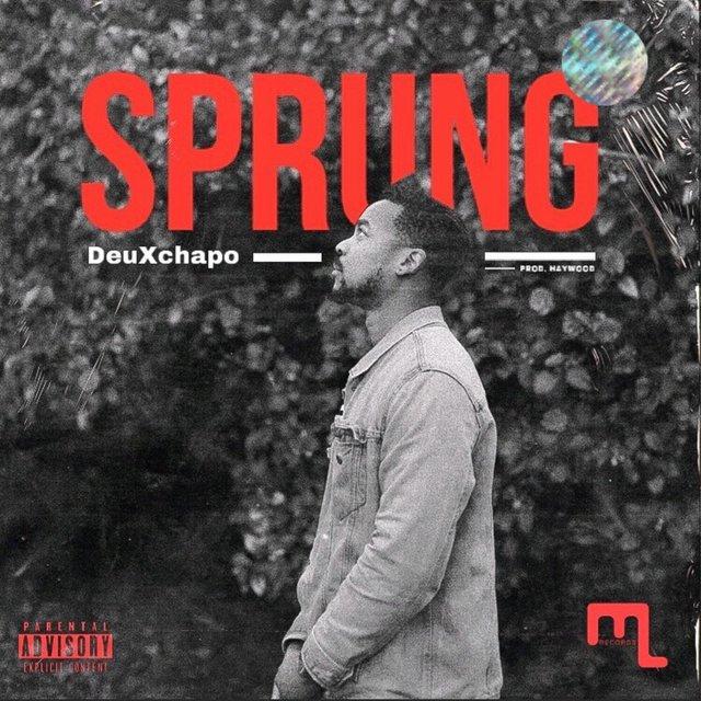 Cover art for album Sprung by DeuXchapo