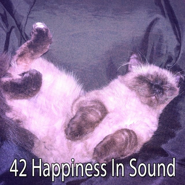 42 Happiness in Sound