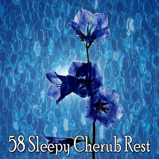 58 Sleepy Cherub Rest