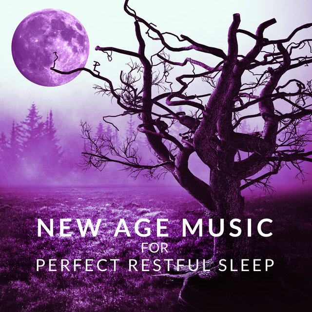 New Age Music for Perfect Restful Sleep