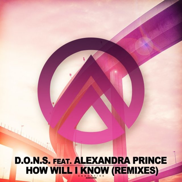 How Will I Know (Remixes)