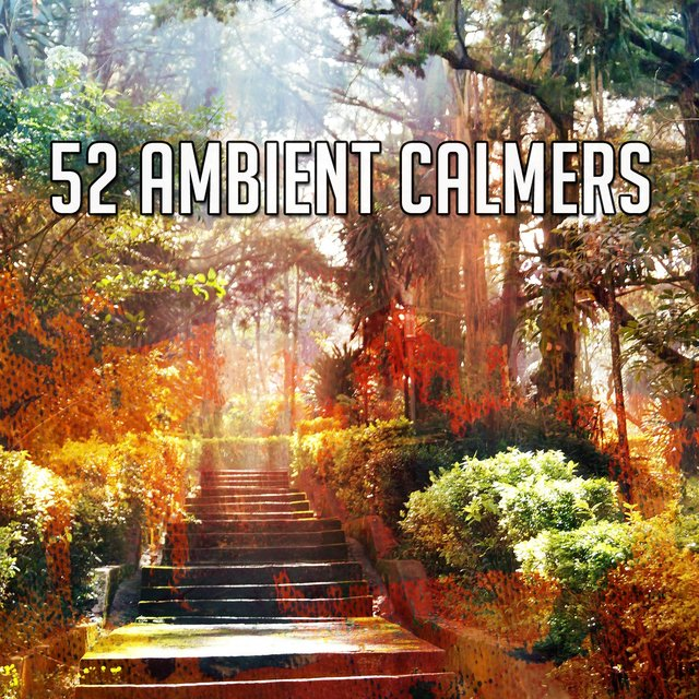 52 Ambient Calmers