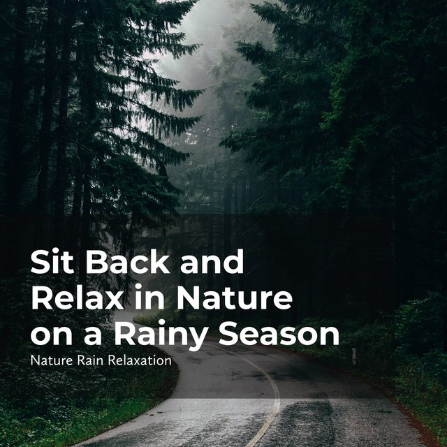 Sit Back and Relax in Nature on a Rainy Season