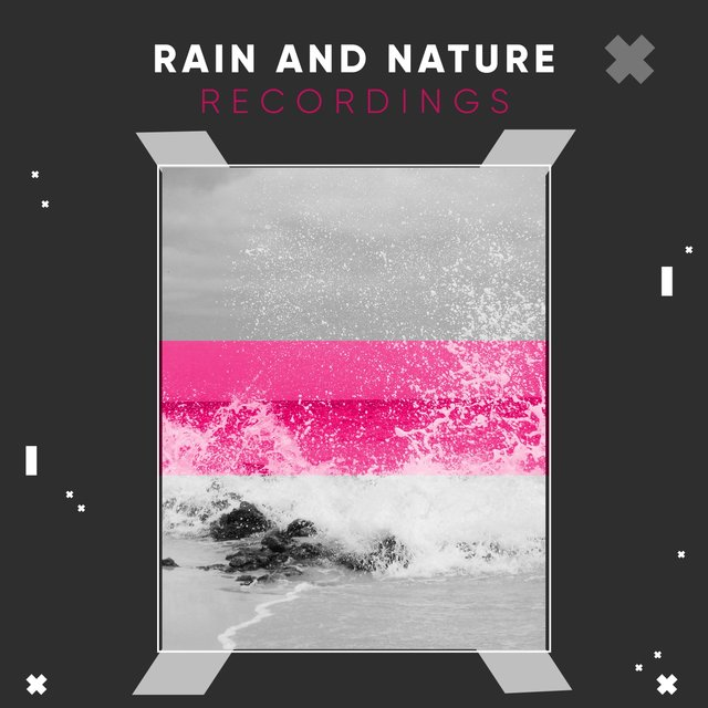 Reflective Garden Rain and Nature Recordings