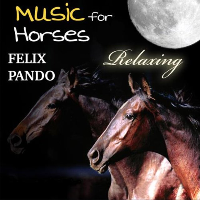 Music for Horses - Relaxing