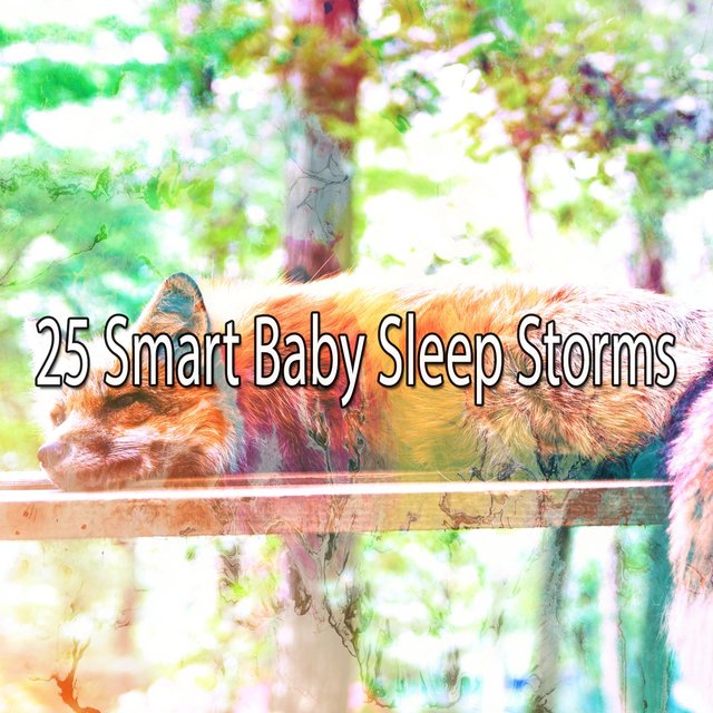 25 Smart Baby Sleep Storms