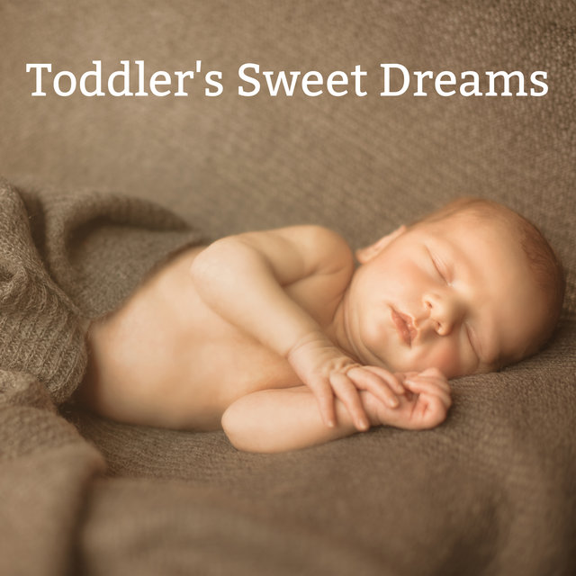 Toddler's Sweet Dreams - Collection of Soothing New Age Sleep Melodies Dedicated to Children under 1 Year of Age, Starry Night, Cradle Song, Tranquility, Baby Lullaby Time