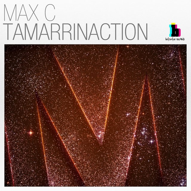 Tamarrinaction