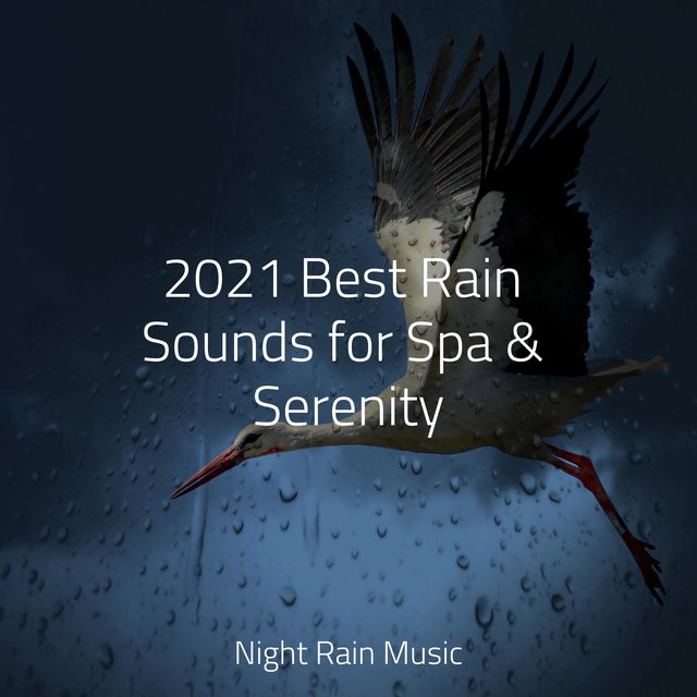 2021 Best Rain Sounds for Spa & Serenity