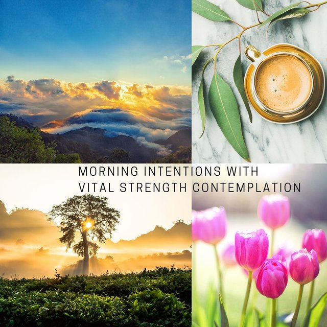 Morning Intentions with Vital Strength Contemplation