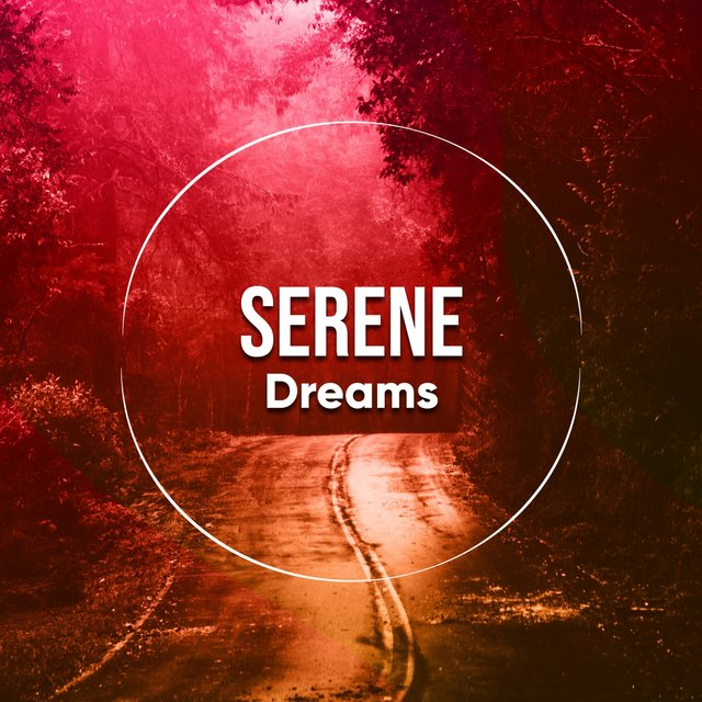 # 1 Album: Serene Dreams