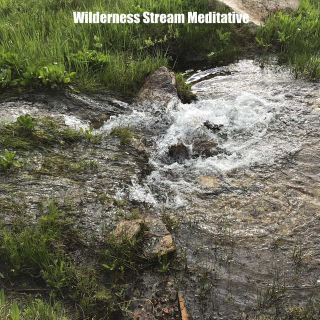Wilderness Stream Meditative