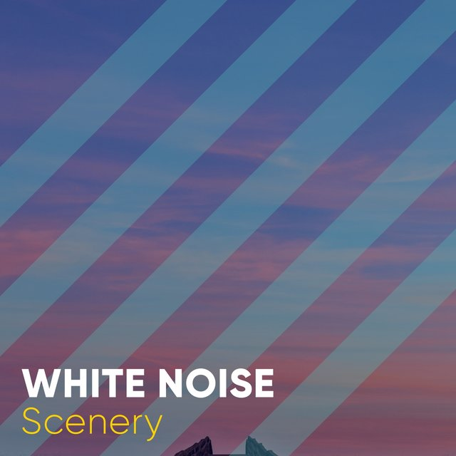 # 1 Album: White Noise Scenery