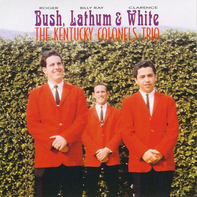 Bush, Lathum, White