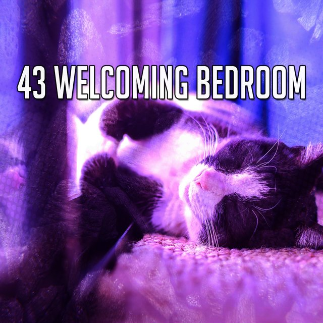 43 Welcoming Bedroom