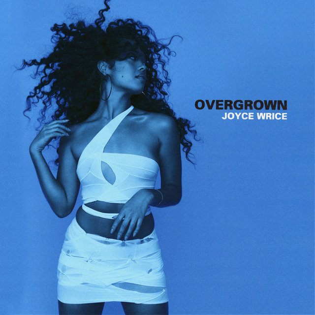 Cover art for album Overgrown by Joyce Wrice