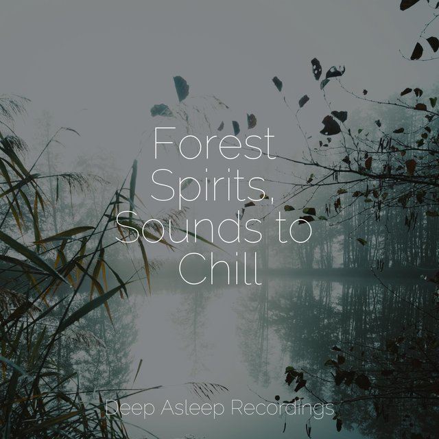 Forest Spirits, Sounds to Chill