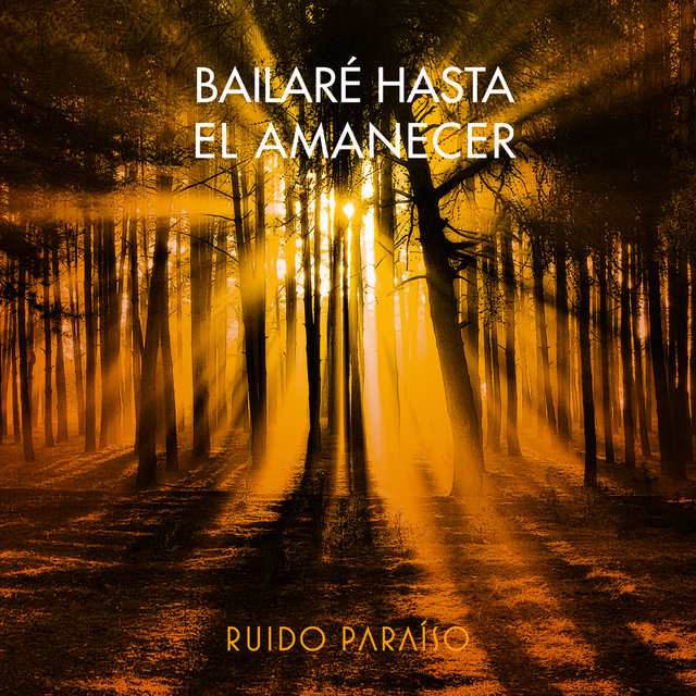 Bailaré Hasta El Amanecer (Single Mix)