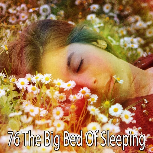 76 The Big Bed of Sleeping