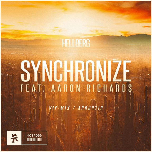 Synchronize (VIP Mix / Acoustic)