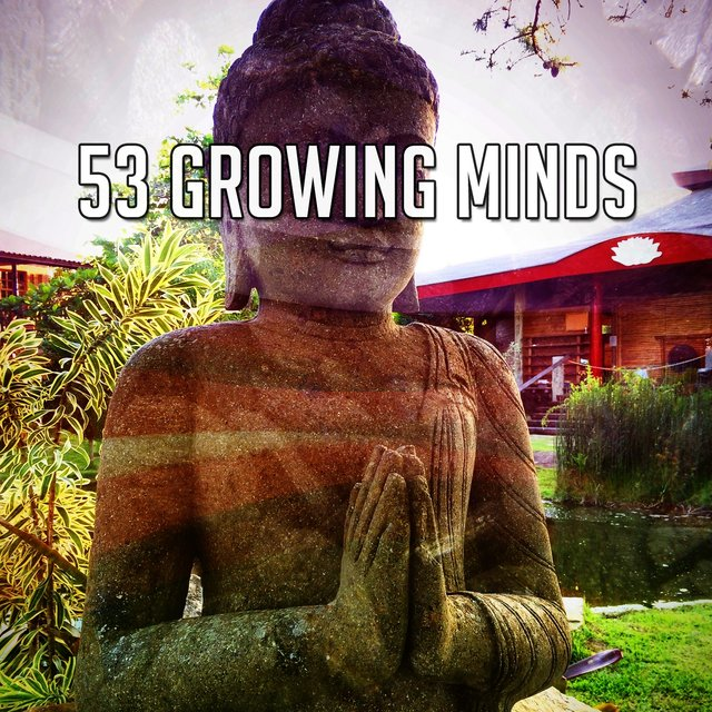 53 Growing Minds