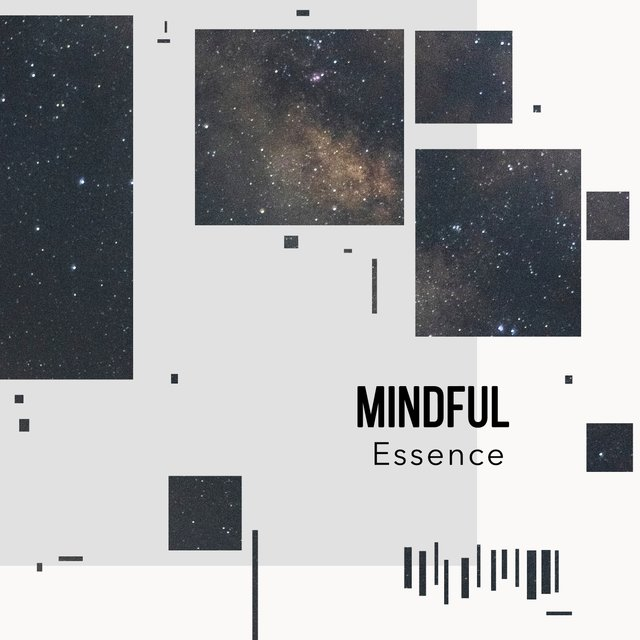 Mindful Essence
