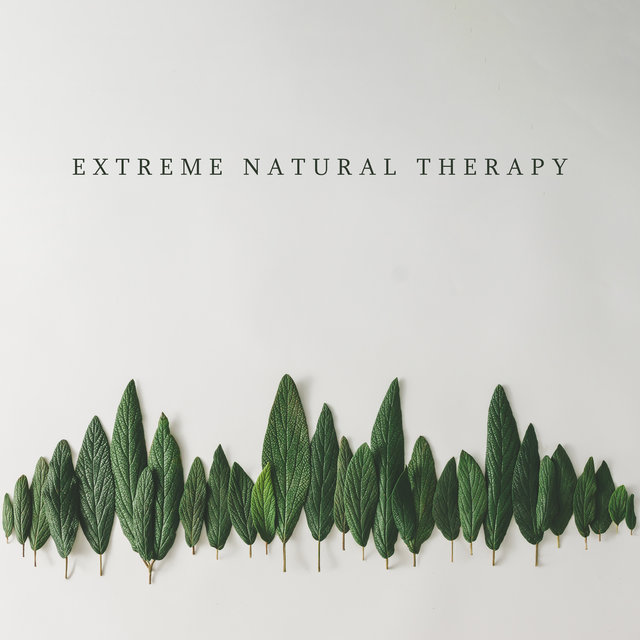 Extreme Natural Therapy: Forest Sounds, Water Purification, Wind Reflection
