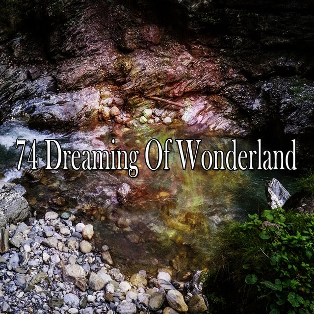 74 Dreaming of Wonderland