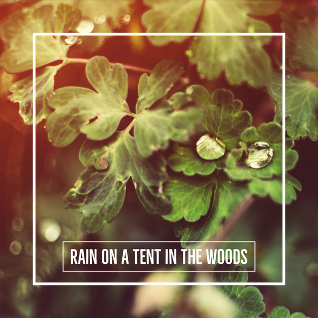 Rain On A Tent In The Woods