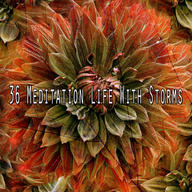 36 Meditation Life with Storms