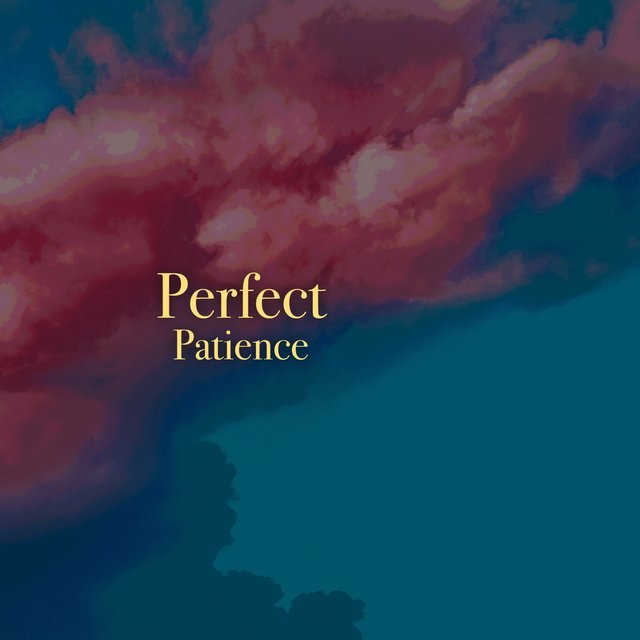 # 1 Album: Perfect Patience