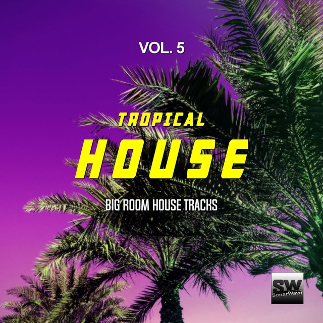 Tropical House, Vol. 5 (Big Room House Tracks)