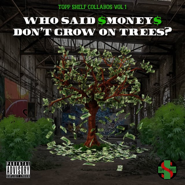 Who Said Money Don't Grow on Trees