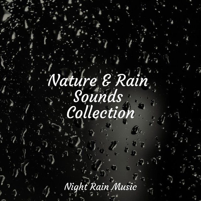 Nature & Rain Sounds Collection