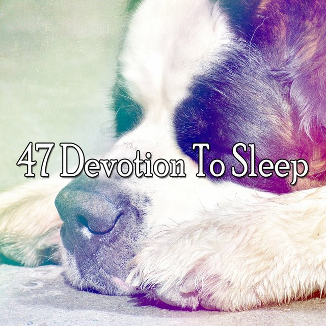 47 Devotion to Sle - EP