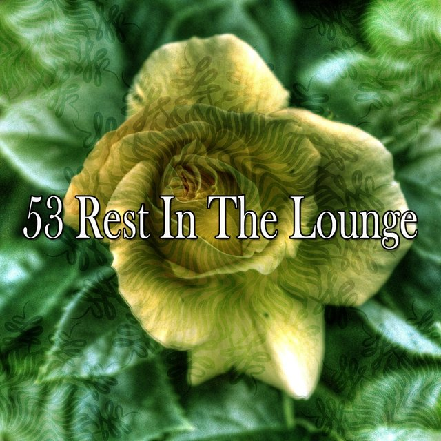 53 Rest in the Lounge