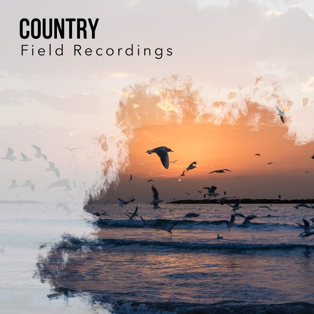 Spiritual Tranquil Country Field Recordings