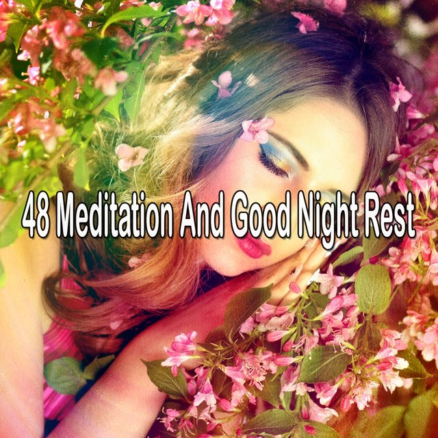 48 Meditation And Good Night Rest