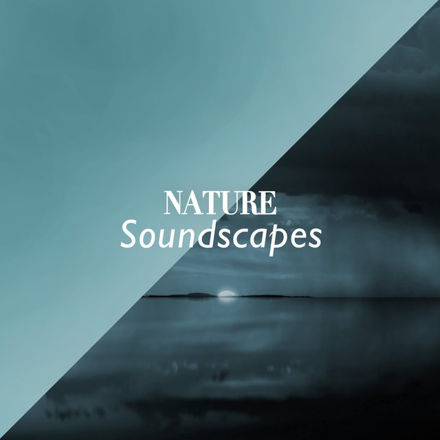 """ Bohemian Nature Soundscapes """