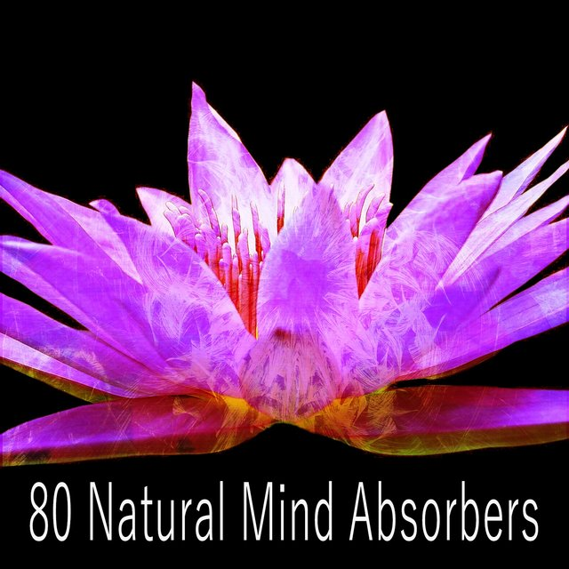 80 Natural Mind Absorbers