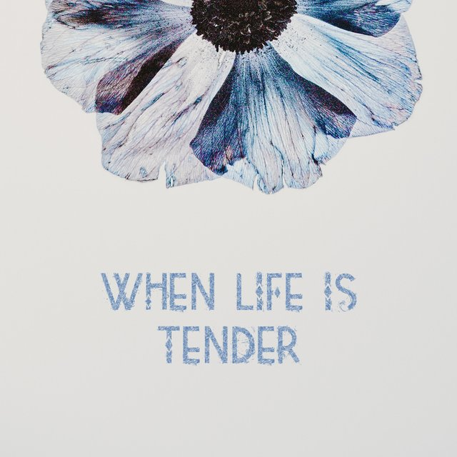 When Life Is Tender
