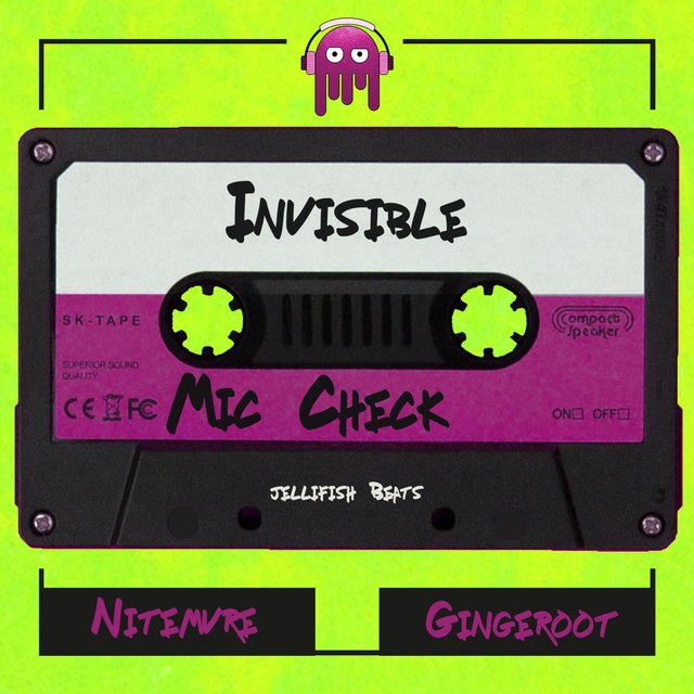Invisible (feat. Nitemvre & Jellifish) [Mic Check]