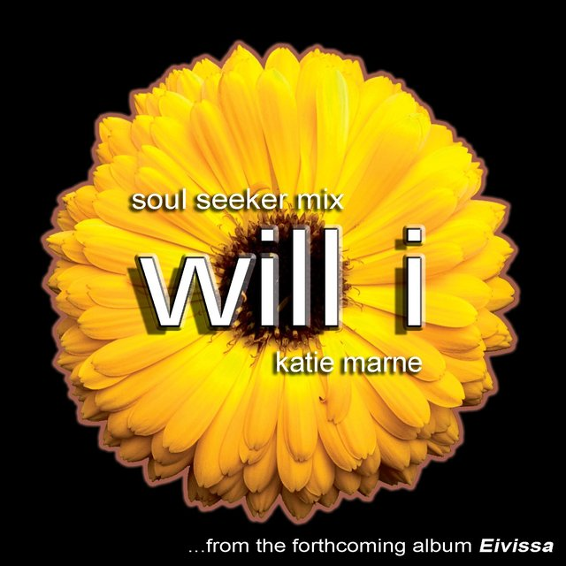 Will I (soul Seeker Mix)