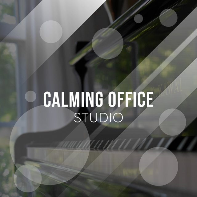 Calming Office Piano Studio