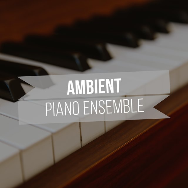 Ambient Restaurant Piano Ensemble