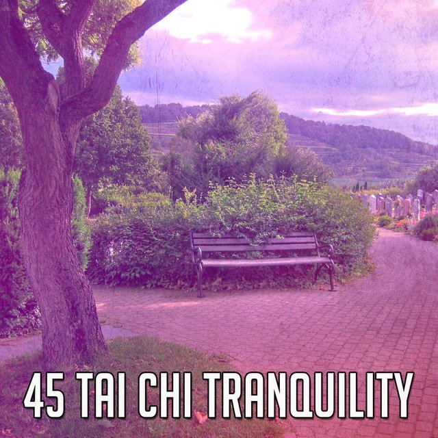 45 Tai Chi Tranquility