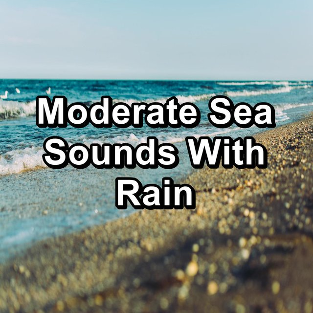 Moderate Sea Sounds With Rain