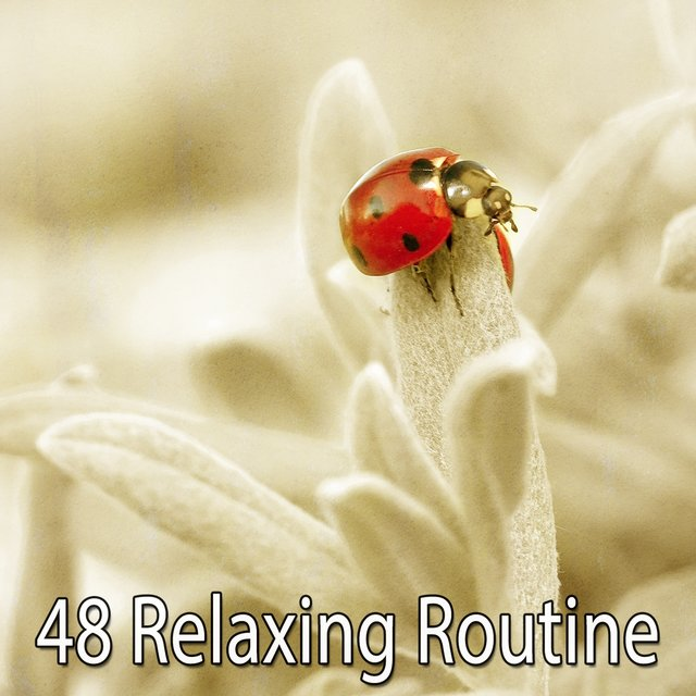 48 Relaxing Routine